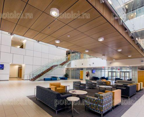 Подвесной потолок - какой сделать выбор