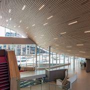 Потолки радиусного дизайна Албес