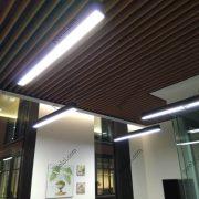 Потолок из ГСП, покрыт шпоном, офис Керама Марацци