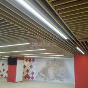 Кубообразный потолок Албес